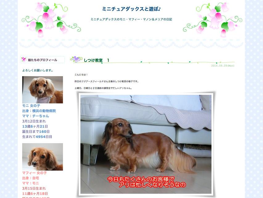 ミニチュアダックスと遊ぼ♪ しつけ教室 1 (09/29)