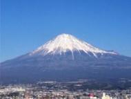 自宅でできる「アロマ&ドッグマッサージセミナー」富士宮教室 2014年3月16日(日)
