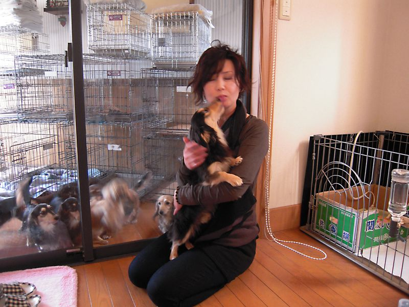 愛犬のためのアロマ&ドッグマッサージ教室(2012/2/18 富士宮教室)