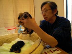 愛犬のためのアロママッサージ教室 富士宮教室