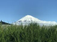 富士山はすっかり雪化粧