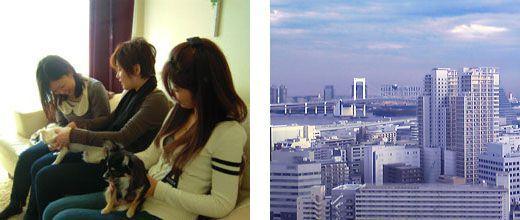 自宅でできる「アロマ&ドッグマッサージ教室」東京教室