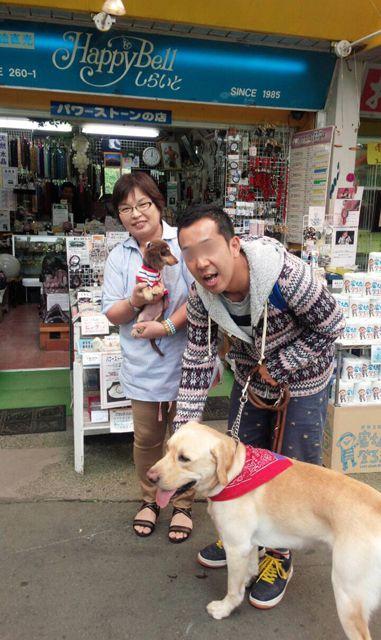 まさはる君が行く!ポチたまペットの旅:テレビ東京