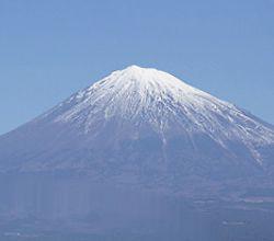 アロマ&ドッグマッサージセミナー 静岡県富士宮教室