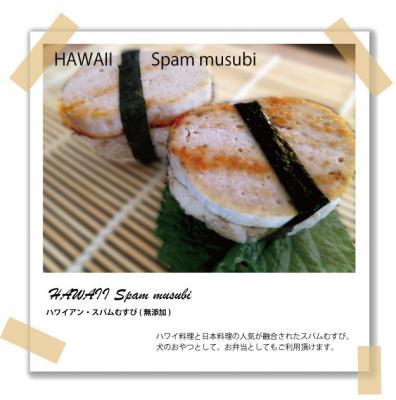 ONE DAY CAFE 二子玉川店のオープンを記念して犬用・スパムむすび(犬の手作りご飯)の発売を2013年7月2日より開始