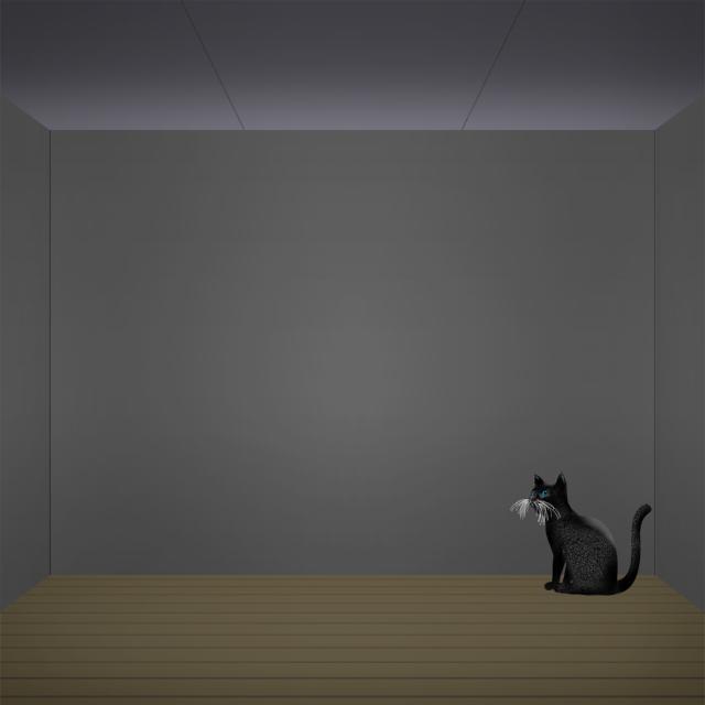 ブラックキャットルーム.jpg