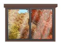 紅葉の見える窓